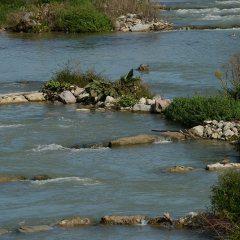 Fischaufstiegs- und Laichgewässer am Wasserkraftwerk Rheinfelden