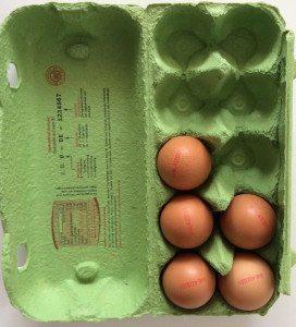 Energiesparen mit Eierkocher