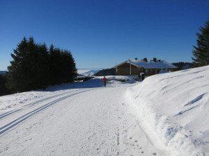 Schwarzwald_2