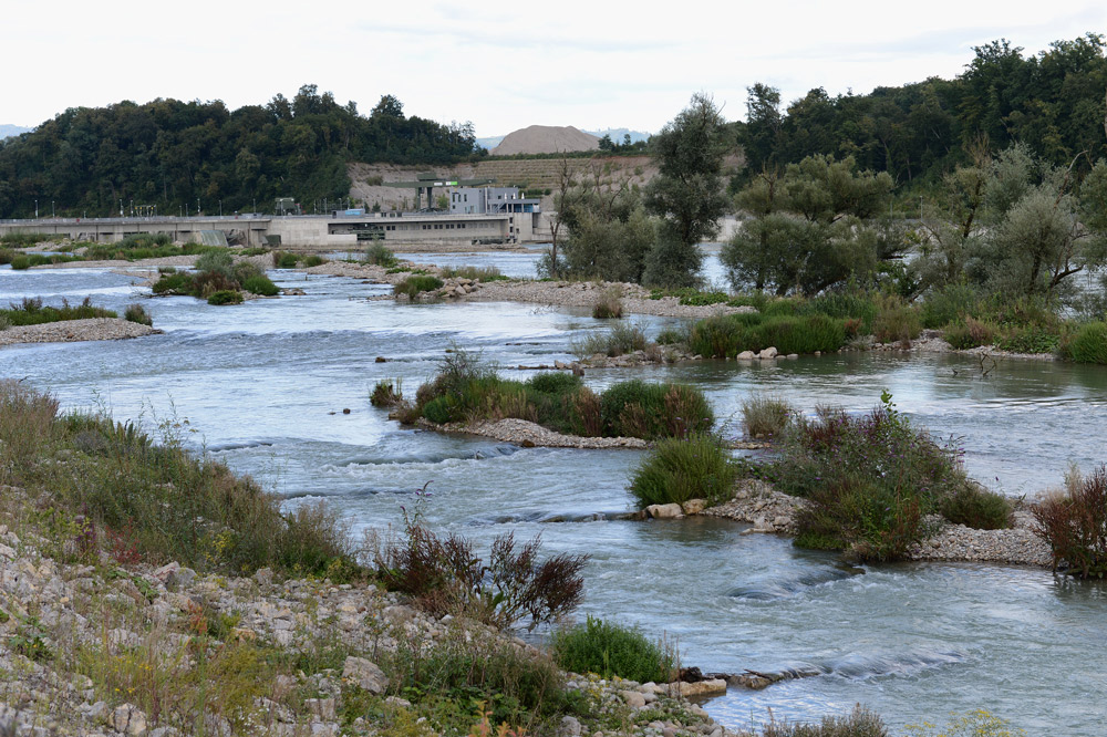 Wasserkraftwerk-Rheinfelden-Umgehungsgewaesser