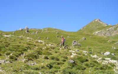 Das Mountain Bike zum Pedelec machen – geht das?