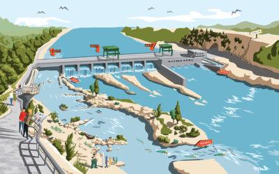 Pionier in Sachen Ökologie: Neue Internetseite zeigt ökologisches Engagement von Energiedienst