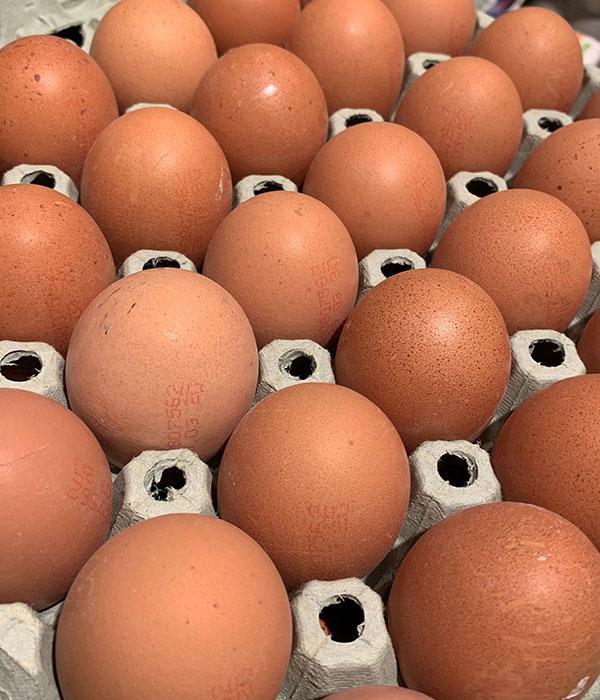 Mehrweg-Verpackungen für Eier verwenden