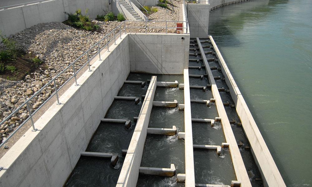 In Fischreppen passieren Fische das Wasserkraftwerk Rheinfelden.