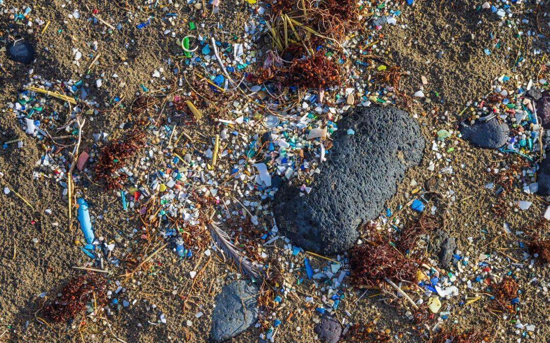 Plastik-Planet: Mikroplastik im Boden