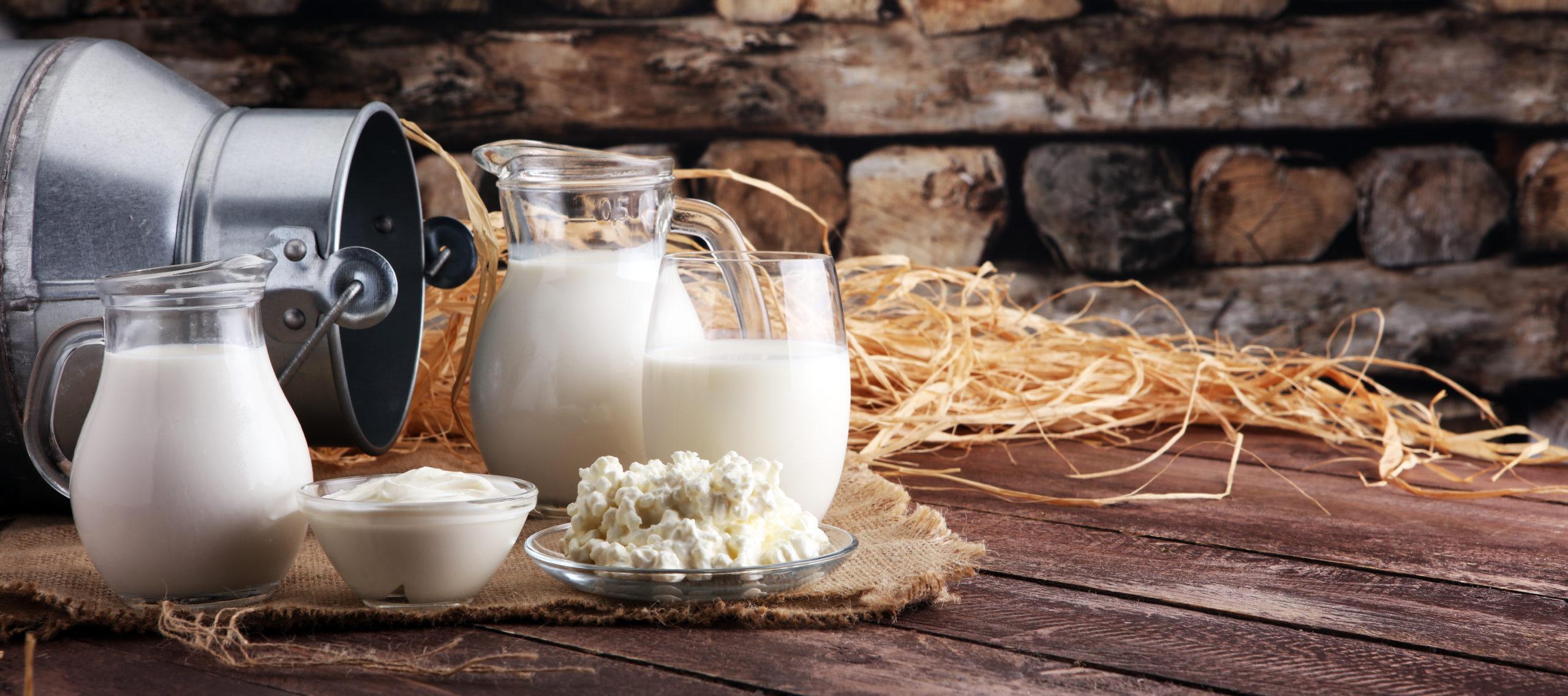 Milch ist ein wasserintensives Produkt. Käse noch mehr!