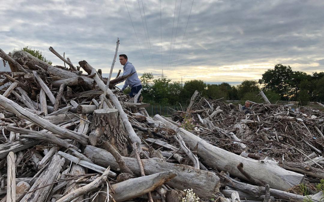 Upcycling: Vom Treibholz zum Weihnachtsbaum