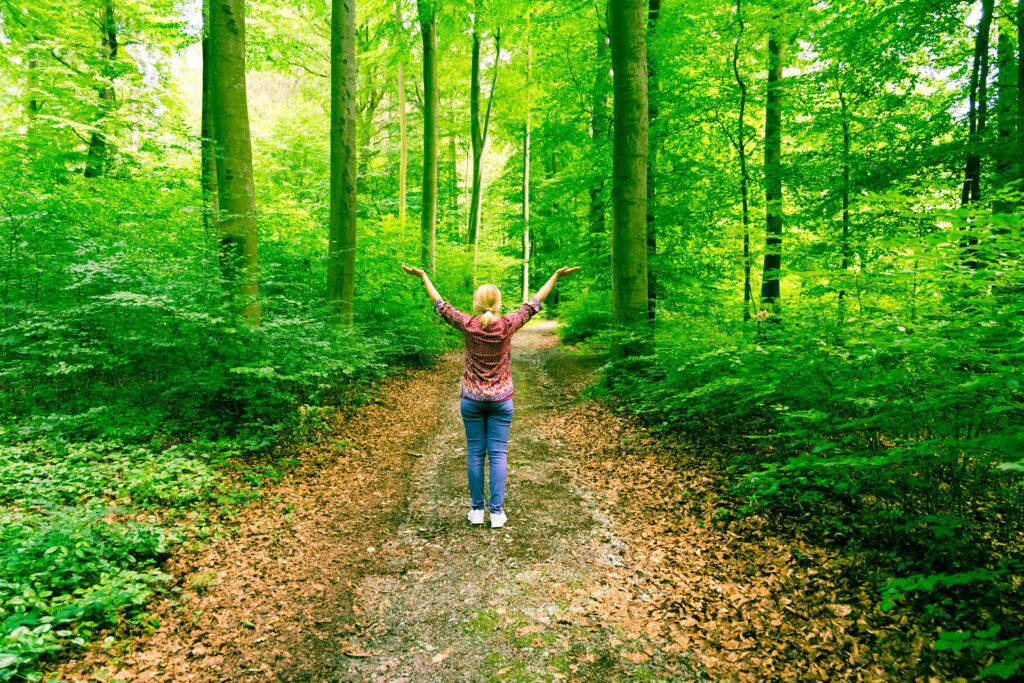 Waldschutz - Waldbaden ist gut für die Gesundheit
