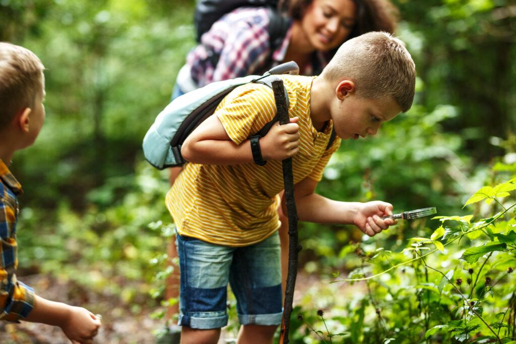 Wälder sind ein wichtiger Erfahrungsraum für unsere Kinder