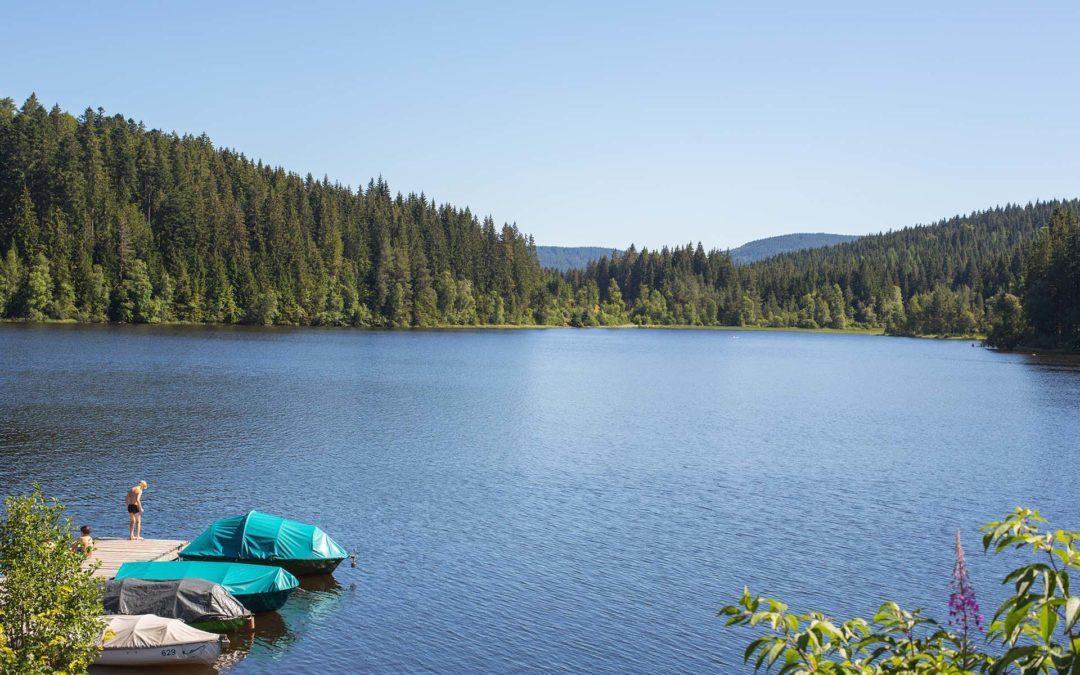 7 Ausflugstipps am Wasser im Schwarzwald
