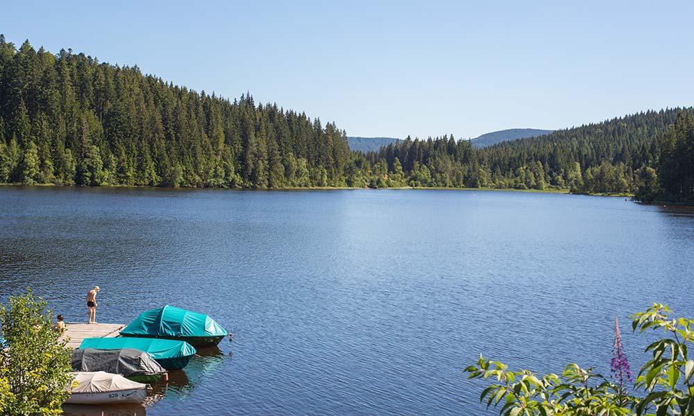 Ein Ausflugstipp im Schwarzwald ist der Windgfällweiher