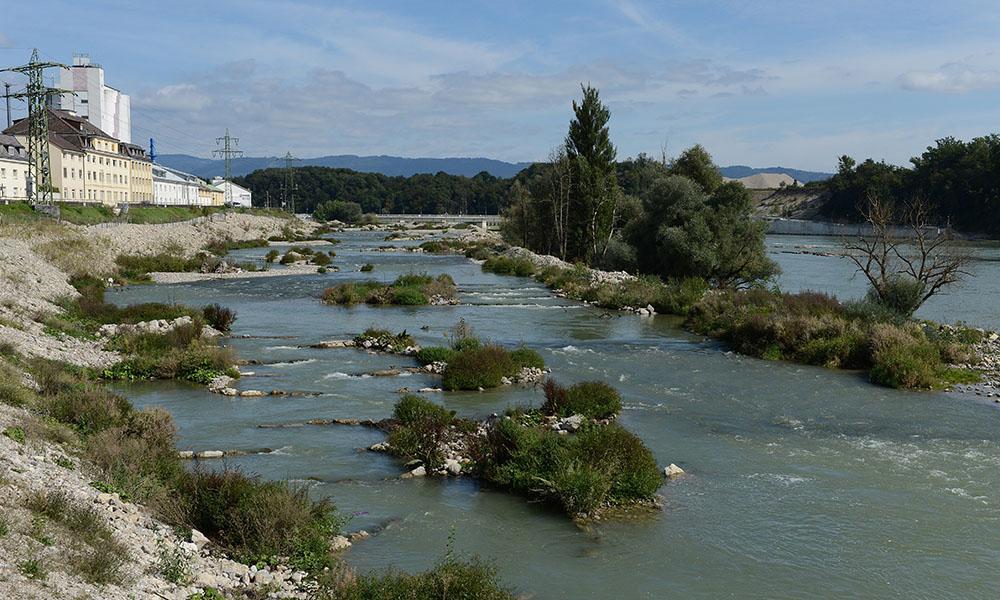 Im Umgehungsgewässer können Fische das Wasserkraftwerk Rheinfelden passieren.