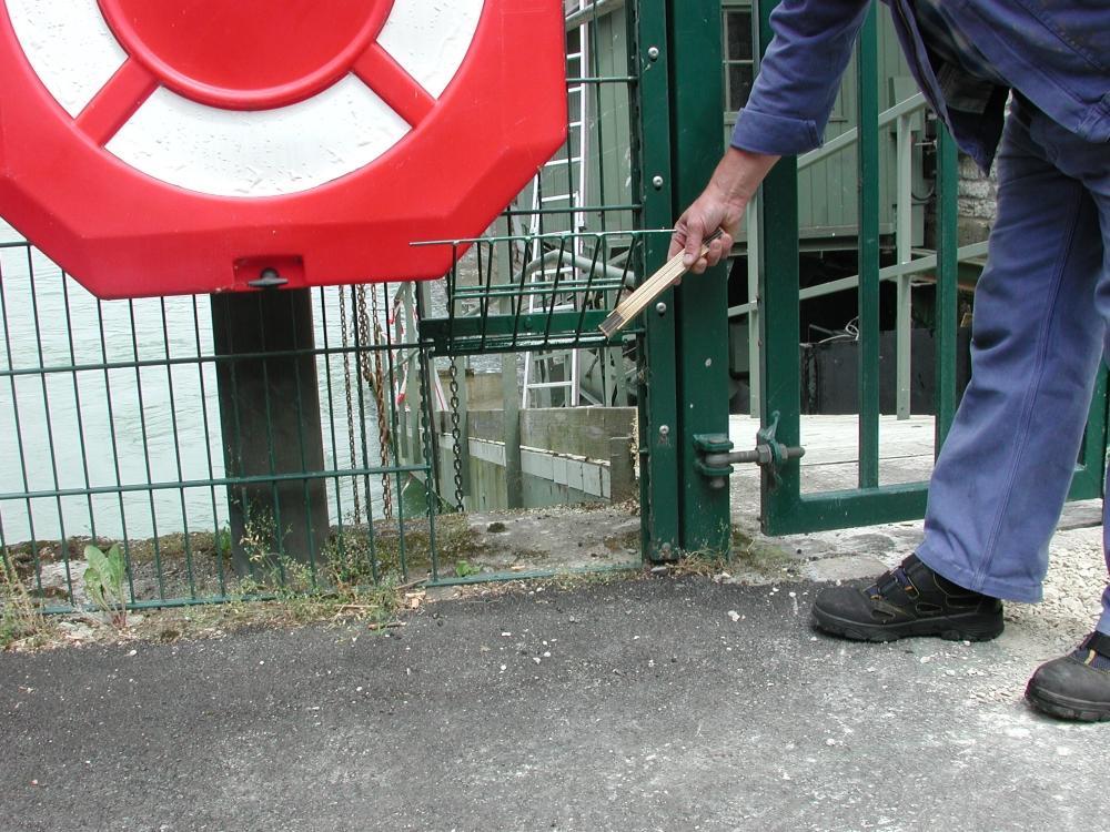 Eine Hand hält eine kleine Klappe in einem Zaun offen.