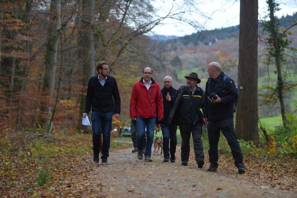 Forstamtsleiter Herbert Stiefvater, Marvin Freiter, Martin Käfer (Geschäftsführer Holzwärme Müllheim GmbH), Michael Sattler (Geschäftsführer Holzwärme Müllheim GmbH) und Stephan Günther (Stadtwerke MüllheimStaufen GmbH) gehen einen Waldweg entlang.