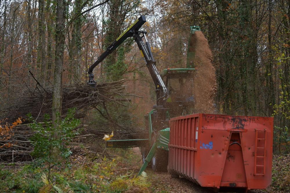 Mobile Holzhackmaschine verarbeitet Äste für Holzwärme Müllheim